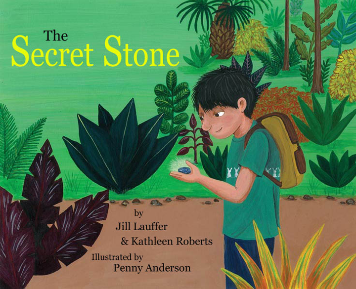 Secret Stone Book Cover